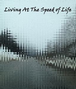 living at the speed of life copy
