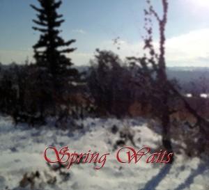 spring waits copy